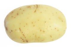 potatis royaltyfria foton