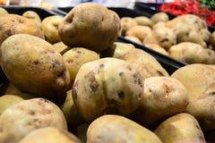 Potatis för din baner och broschyr Arkivfoton