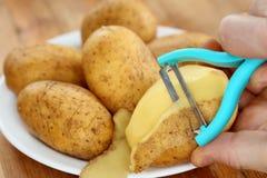 Potatis och peel royaltyfria bilder