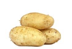Potatis som tre isoleras på vit royaltyfri fotografi