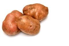 Potatisar Royaltyfria Foton