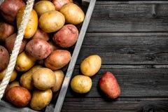 Potatisar i en ask arkivfoto
