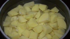 Potatisar i en kruka stock video
