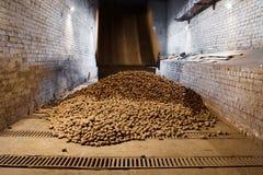 Potatisar i lagringshus Arkivfoto