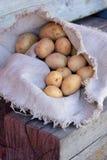 Potatisar i påsen Royaltyfri Fotografi