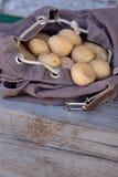 Potatisar i ryggsäck Royaltyfri Fotografi