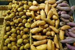 Potatisar och sötpotatisar royaltyfria bilder