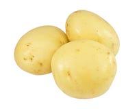 potatisar rå tre Arkivfoto