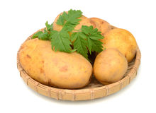potatisar skivade yellow Royaltyfri Fotografi