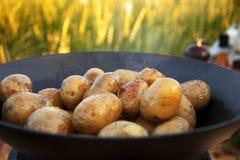 Potatisar som får brynte i gjutjärnpanna Arkivfoton