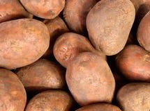 Potatisbakgrund Arkivbild
