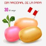 potatisdag i Peru Arkivfoton