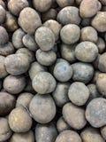 Potatisen är en ätlig knöl erhållande från växterna av arten Solanum Tuberosum som används brett för matavsikter efter cooki royaltyfri foto