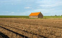 Potatisfält bredvid ett dike precis för skörden Arkivbild