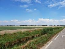 Potatisfält i den Wilde Veenen polder i Waddinxveen Nederländerna royaltyfria bilder