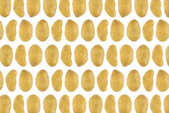 Potatismodell Royaltyfri Fotografi