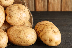 Potatisnärbild royaltyfria bilder