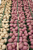 Potato. Red and white Potatoes in the farmer market Royalty Free Stock Photos