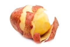 Potato. Crude potato with  skin on a white background closeup Royalty Free Stock Photography