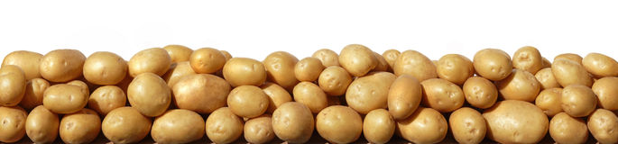 Potato. Tubers on a white background Royalty Free Stock Images