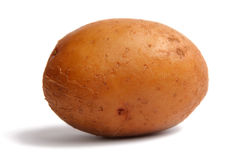 Potato. Stock Images