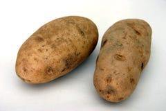 Potato. Two potatoes Stock Photography