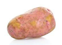 Potato. A potato on white background Stock Photo