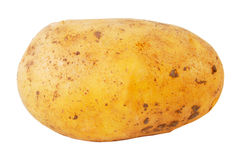 Free Potato Royalty Free Stock Image - 22547266