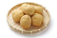 Potato. Fresh potato isolated on bamboo basket royalty free stock photo