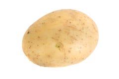 Potato. Photo of a potato isolated Royalty Free Stock Image