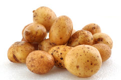 Potato. Some potatoes on the white background Royalty Free Stock Photo