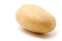 Potato. Isolated on white background royalty free stock photo