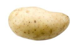 Potato. Isolated potato Stock Photography