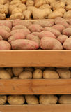 Potato. In the wood box royalty free stock images