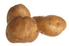 Potato. Fresh brown potato isolated on white background Royalty Free Stock Image