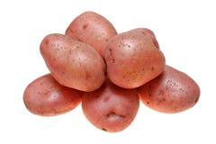 Potato Stock Photography