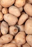Potato background Stock Photos