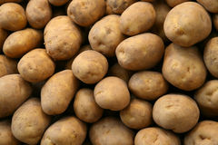 Potato Background. Potatoes for sale in the Mercat Central of Valencia, Spain Royalty Free Stock Photos