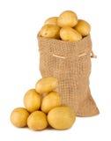 Potato bag. With fresh potatoes stock photo