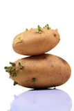 Potato balance Royalty Free Stock Photos