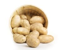 Potato Basket Stock Image