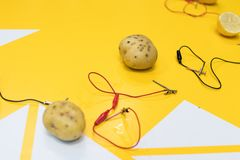 Potato battery STEM activity with potatoes, lemons, alligator cl stock images