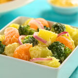 Potato Broccoli Mandarin Salad Royalty Free Stock Image
