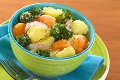 Potato, Broccoli, Mandarin Salad Stock Photos