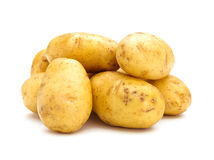 Potato bunch Stock Images