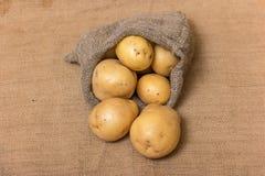 Potato Royalty Free Stock Photos