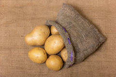 Potato. In a burlap sack Stock Photo