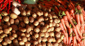 Potato and carrot Royalty Free Stock Photos