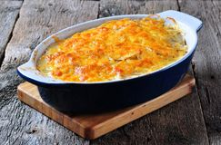 Potato casserole with chicken, onions and cheese Royalty Free Stock Photos