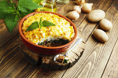 Potato casserole with meat and nettle Stock Photography